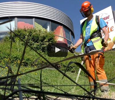 """Les travailleurs de l'ESAT Ferme de Chosal en mission """"Espaces Verts' chez Glace des Alpes"""