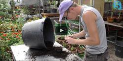 Les métiers de l'horticulture à l'ESAT-Les Ateliers du Plateau, pour le concours SOLIDEL